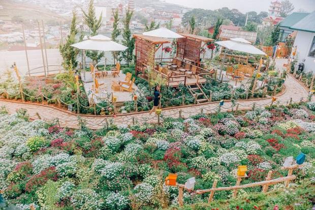 Vườn hoa thơ mộng của I.XORA. (Ảnh: Internet)